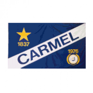 Group logo of Carmel, IN Networking Group